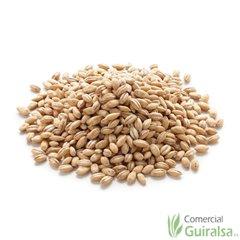 Cebada entera limpia materia prima - Saco 25 Kg