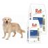 Daily Maintenance REX pienso perros - Guiralsa