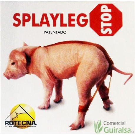 Splayleg Stop Anti Patas Abiertas en Lechones