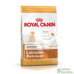 Perro Labrador Retriever Junior Royal Canin. Saco 12 kg.