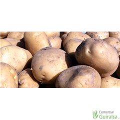 Patata de siembra Agria Ecológica 35/55 Certificada Saco 25 kg