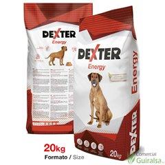 Energy Dexter pienso para perros 20 kg - Guiralsa