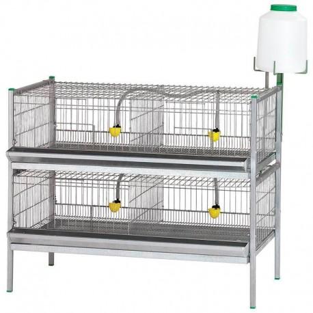 Batería de Exposición de Aves modelo de inicio 2 pisos principio