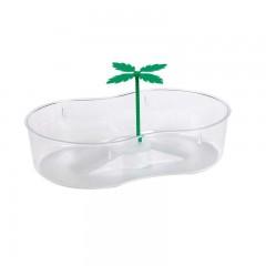 Tortuguera con Palmera de plástico transparente